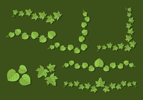 Flacher Poison Ivy vektor