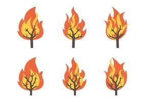 Brinnande buske vektor illustration samling