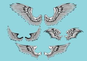 Sammanfattning Vector Illustration Wings Set