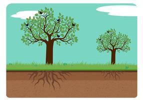 Träd med rötter vektor illustration