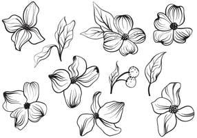 Freie Weinlese-Hartriegel-Blumen-Vektoren vektor