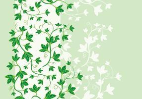 Schöne Vektor Poison Ivy Vektor
