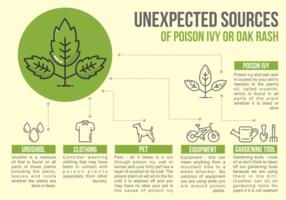 Poison Ivy Infografisch vektor