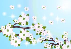 Hartriegel Blumen Hintergrund Vektor
