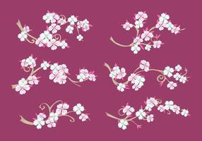 Set von Hartriegel Blumen auf Kastanienbraun Hintergrund vektor