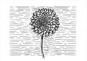 Fri hand dras vektor blomma
