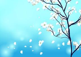 Hartriegel Baum Hintergrund Vektor