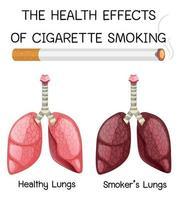 Plakat über die gesundheitlichen Auswirkungen des Zigarettenrauchens vektor