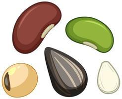 Satz von verschiedenen Samen lokalisiert auf weißem Hintergrund