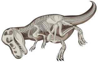 fulla dinosaurie skelett på vit bakgrund vektor