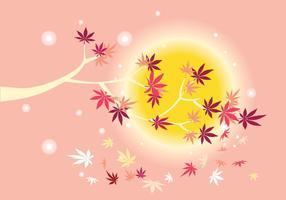 Lätt japansk lönnplanta med solbakgrund och falllövlöv
