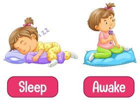 motsatta ord med vaken och sömn vektor