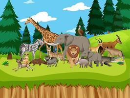 grupp av vilda afrikanska djur i skogen scen