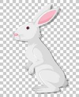 weißer Kaninchenkarikatur lokalisiert auf transparentem Hintergrund