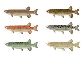 Set Muskie Fisch Vektor