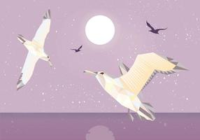 Albatros Low Poly Illustration Vektor