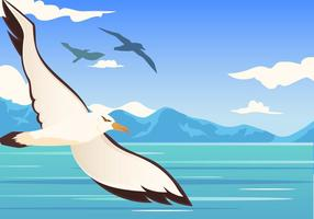 Albatross fågelflygning vektor