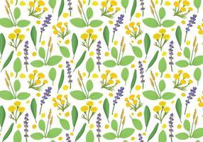 Free Herbs Plantain Pattern Vektoren