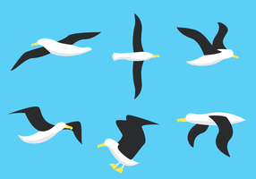 Vit Albatrossvektor vektor