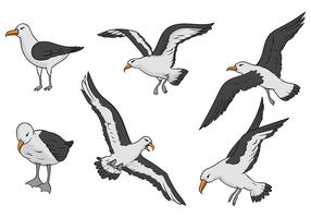 Albatross Vector Ikoner