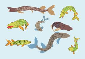 muskie fisk vektor