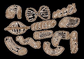 Hand gezeichnete Makkaroni vektor