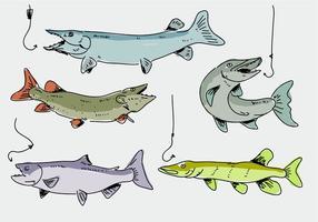 muskie fisk hand ritad doodle vektor illustration