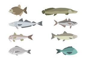 Plana fiskvektorer