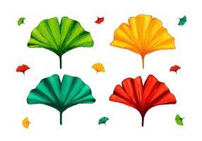 Verschiedene Farbe Ginkgo Leaf vektor