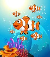 många exotiska fiskar seriefigur i undervattensscenen med koraller