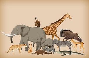 grupp vilda djur på bakgrund