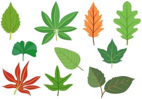 Freie Blätter Vektoren