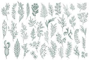 handgezeichnete Blumendekorationen vektor