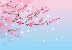 Plommonblomma Rosa bakgrund