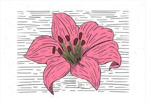 fri hand dras vektor blomma illustration