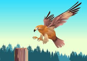Flygande europeisk buzzardvektor