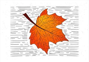 Kostenlose handgezeichnete Herbst Blatt Illustration