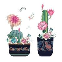 Sukkulenten und Blumen in Töpfen handgezeichnetes Aquarell