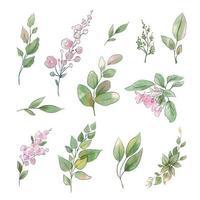 uppsättning akvarell ömma blommor och blad