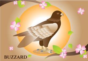 buzzard illustration vektor