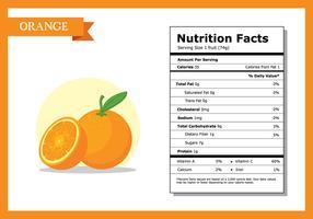 Orange Nutrition Fakta Vector