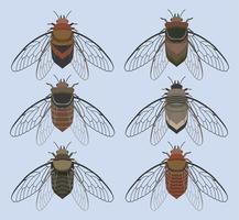 Cicada Bug Med Blå Bakgrund Vector Samling