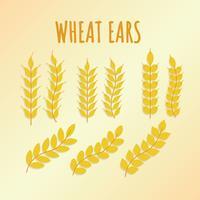 Freie Weizen-Ohren-Vektor