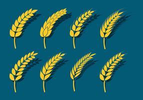 Weizen Ohren Icons vektor