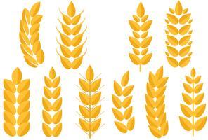 Freier Weizen 2 Vektoren