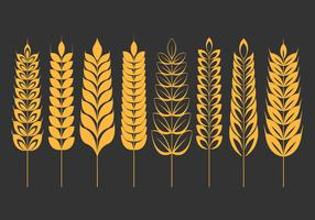 Weizen Ohren Icons Set vektor