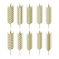 Einfache Weizen Ohren Clipart vektor