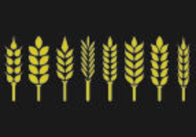 Set von Weizen-Ohren-Symbol