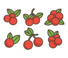Preiselbeeren-Vektor-Icons