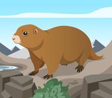 Gopher däggdjur i Mountain Vector Illustration